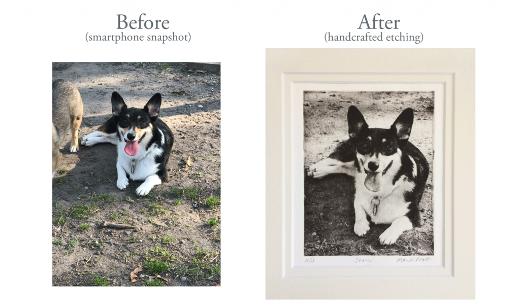 Before-And-After-Dog-Art-Corgi