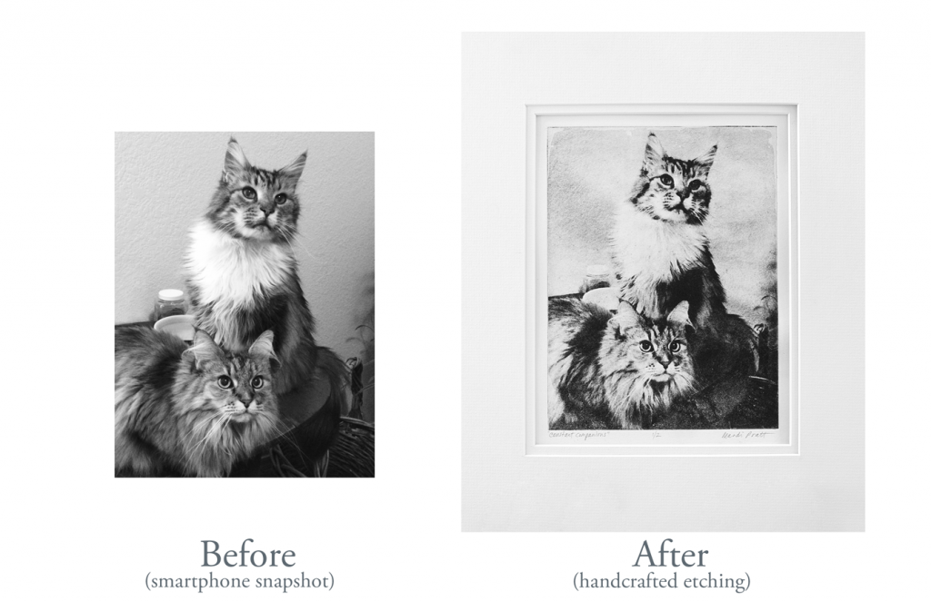 Etching-B4-After-MaineCoons